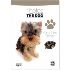 Filhotes The Dog ArtList Collection - Yorkshire Terrier